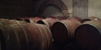 Ageing barriques at Sottimano