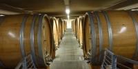 Ageing cellar at Produttori del Barbaresco