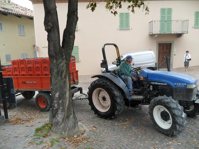Nebbiolo Vendemmia 2010