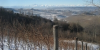 Winter in the Langhe